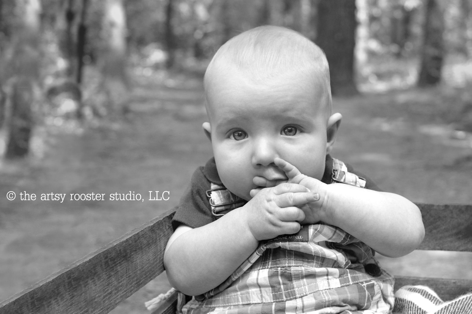 day-5-editing-babies-c-the-artsy-rooster-studio-llc